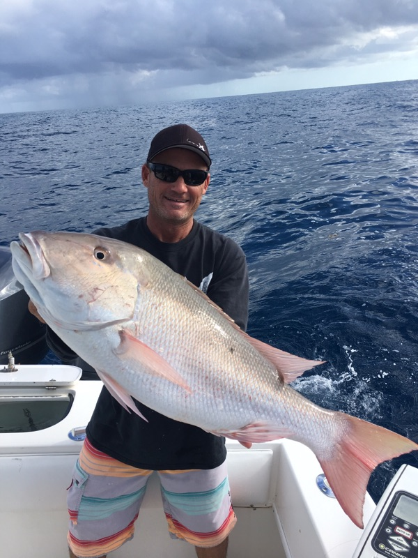 Hefty mutton snapper while fishingvthe reef. This used to be a May fishery, but lately it's been year round. Call me to book your trip.