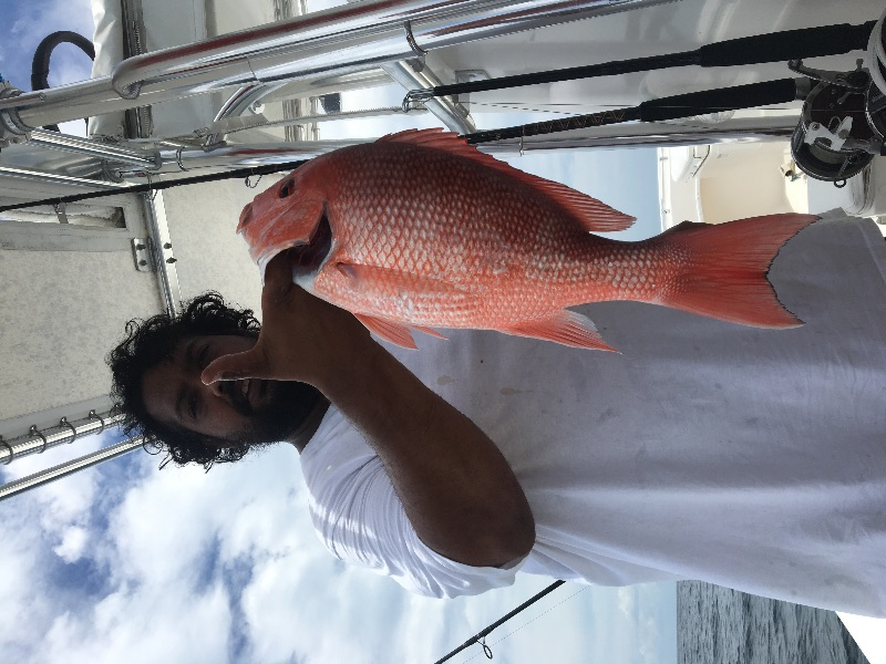 Another genuine red snapper. So many of them sometimes it's hard to fish.  What were they thinking.  Closing this down?