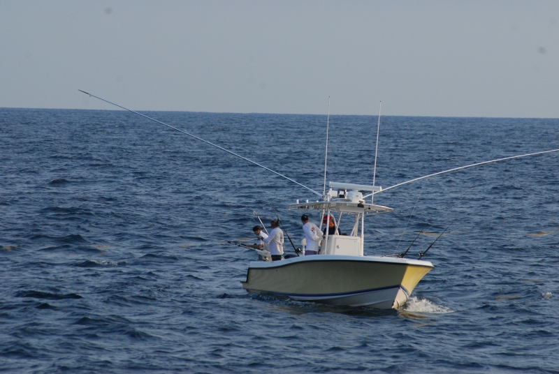 Off the Chain fishing charters out of Stuart Fl. Light tackle sportfishing charters